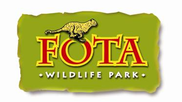 Fota Wildlife Park choose names for new Cheetah Cubs