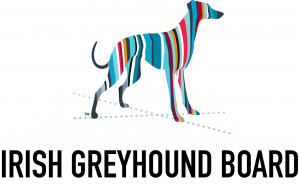 SPORT: Irish Independent sponsors Irish Greyhound Laurels at Curraheen Park