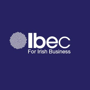 The Cork-Limerick Motorway and N28 Ringaskiddy roads must be Election issues – says IBEC