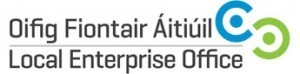 Cork North Local Enterprise Office hosts Website Design & Planning Seminar