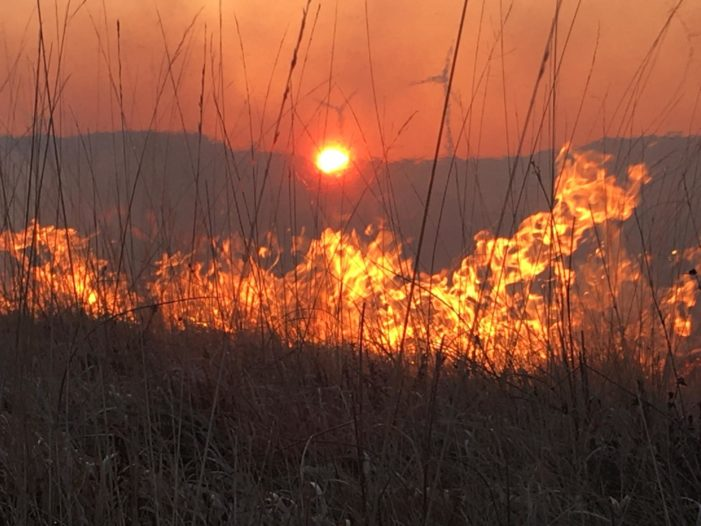 Fire service appeal to landowners to CEASE AND DESIST controlled burning